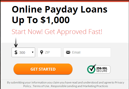 Speedy Payday Loans form